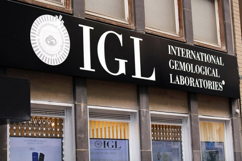 IGL International LTD